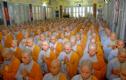 Địa vị của phụ nữ trong Phật giáo