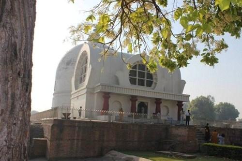 Hoa sa la ở khu tháp đức Phật nhập Niết bàn ở Câu Thi Na, Ấn Độ.